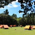 Pop Camp Campsite